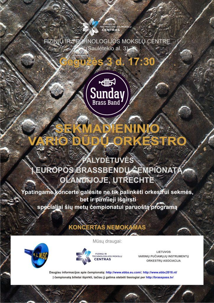 VARIO DŪDŲ ORKESTRO koncertas